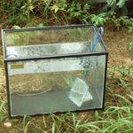 水の観察 -exhibition